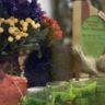 Войлок для дома (в интерьере), арт-объекты
